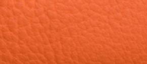 Campfire Orange