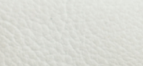 Pristine White